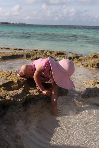 exploring a tide pool san sal
