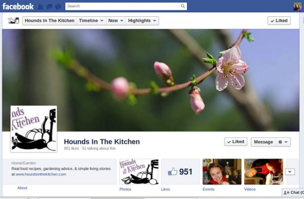 hounds in the kitchen facebook timeline