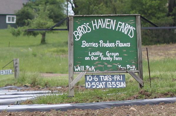bird's haven farms sign