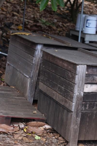 cacao fermentation bins