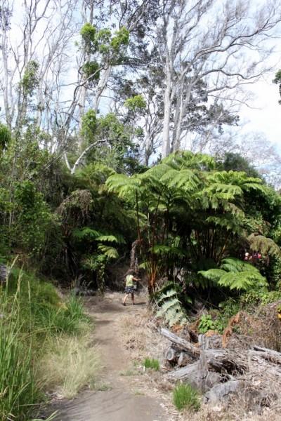bird park hike