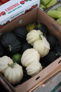squash at auction