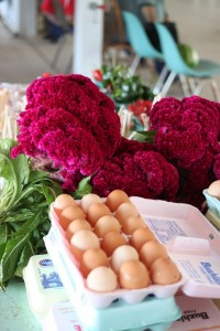 eggs and flowers