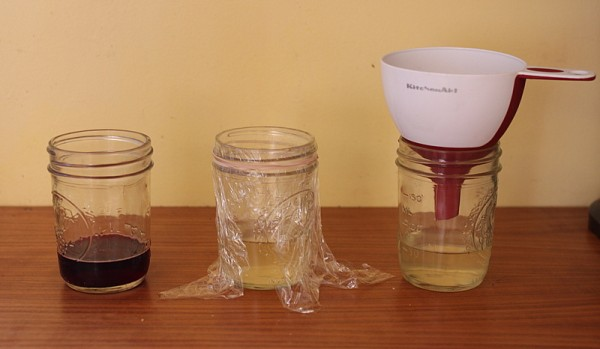 three fruit fly traps