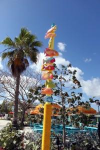 room77 fish bahamas pole
