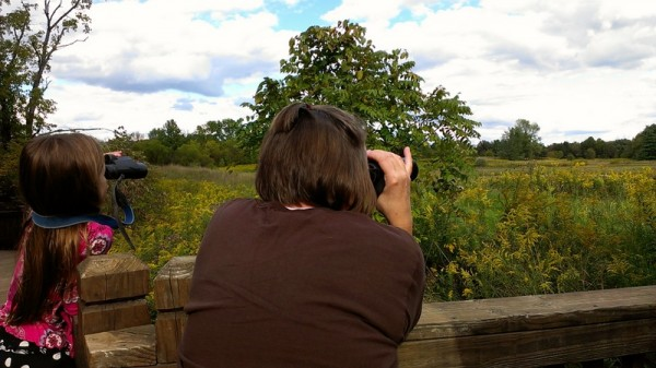 develop nature fluency by bird watching