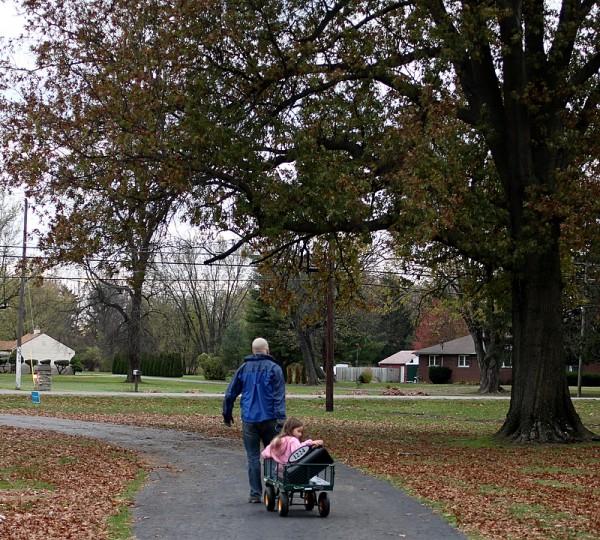 wheeling mailbox and cart