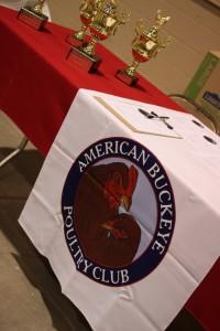 american buckeye poultry club