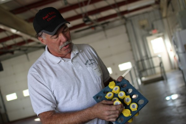 chuck ellis testing milk at pearl valley cheese