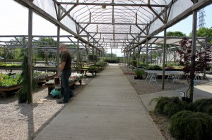 showroom at fisher greenhouse columbus