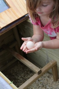 child holding chicken egg