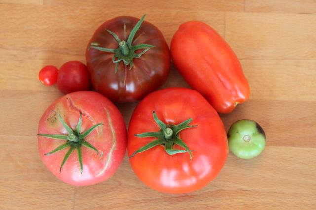 seven heirloom tomatoes