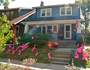 pink flamingos in front of house