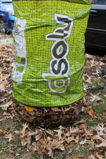 dsolv bag filled with leaves