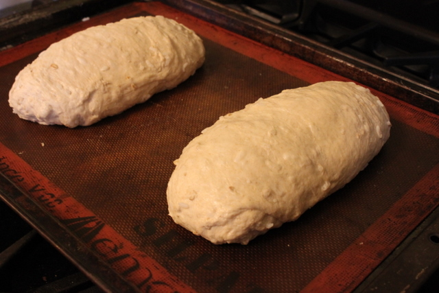 no knead bread loaves before baking