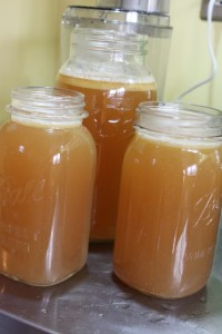 finished turkey stock