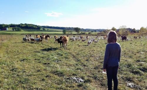 girl watching farm