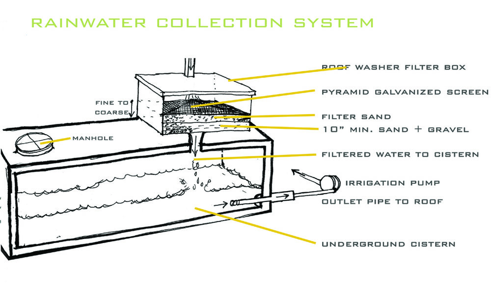 Rainwater harvesting is an environmentally responsible practice that can be tailored to various purposes. This system illustrates rainwater runoff from a green roof, which is then filtered and use to irrigate the same roof. Rainwater may also be used to irrigate your lawn, gardens, or to wash your vehicles or other outdoor equipment.