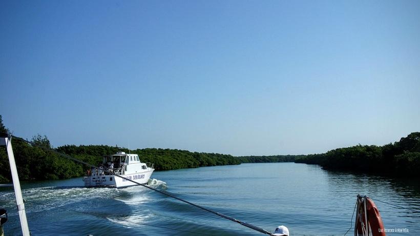 vue catamaran