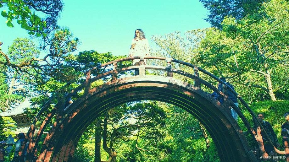 Tea-garden-japan