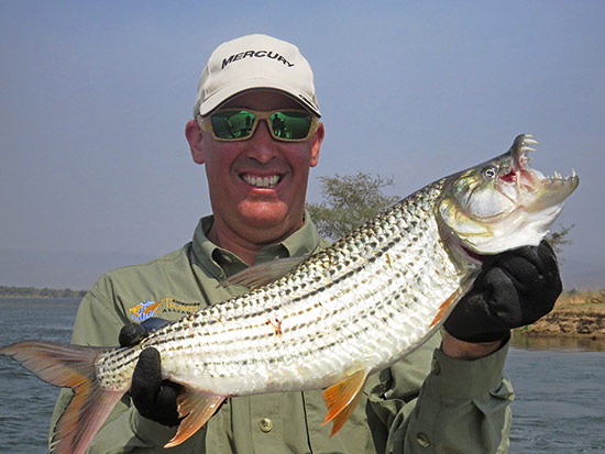 blog-tigerfish01.jpg