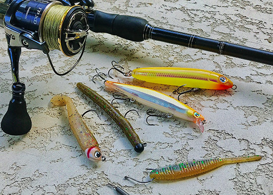 "My best lures during the event: (L-R) Hildebrandt Drum Roller, 4"" Senko with VMC Ned Rig Jig, Rapala Shadow Rap and Skitter V, Shad Shape Worm"