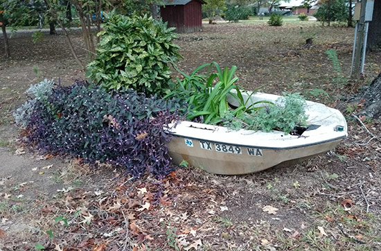 blog-planter.jpg