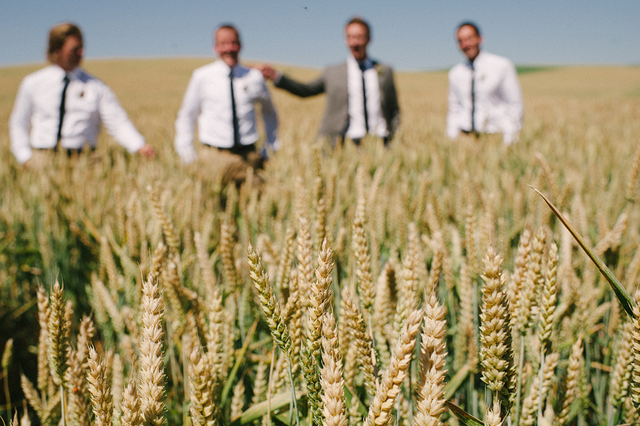 areus wedding wheat field walla walla keith+leah040.JPG