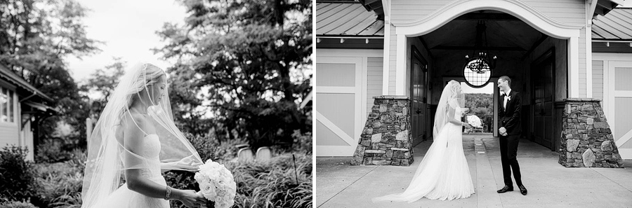 Areus_Wedding_KateandHans_030.JPG