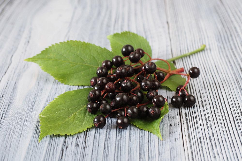 Schwarzer Holunder enthält viel vitamin c.