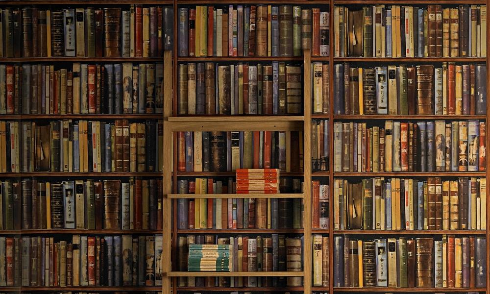 4249320-library.jpg