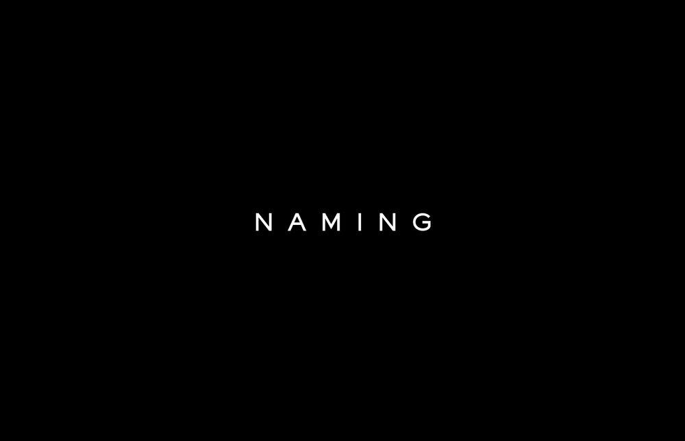 vame-brand-manual-c957fd27.png