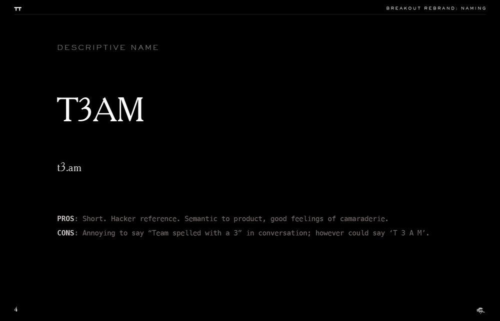 vame-brand-manual3-51076f22.png