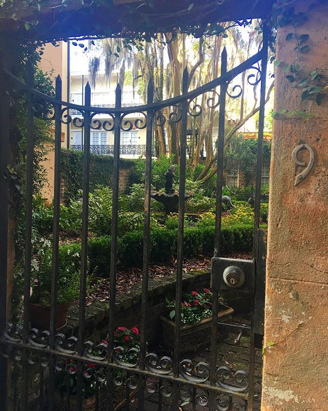 I want a hidden garden like this one from Savannah Georgia. • • • • #nomad #roadtrip #gaytravel #adventure #discover #photography #apocryphonblog #FF #instafollow #pitstop  #instagood #love #beautiful #like4like #visiting #travelgram #tourist #weekend #getaway