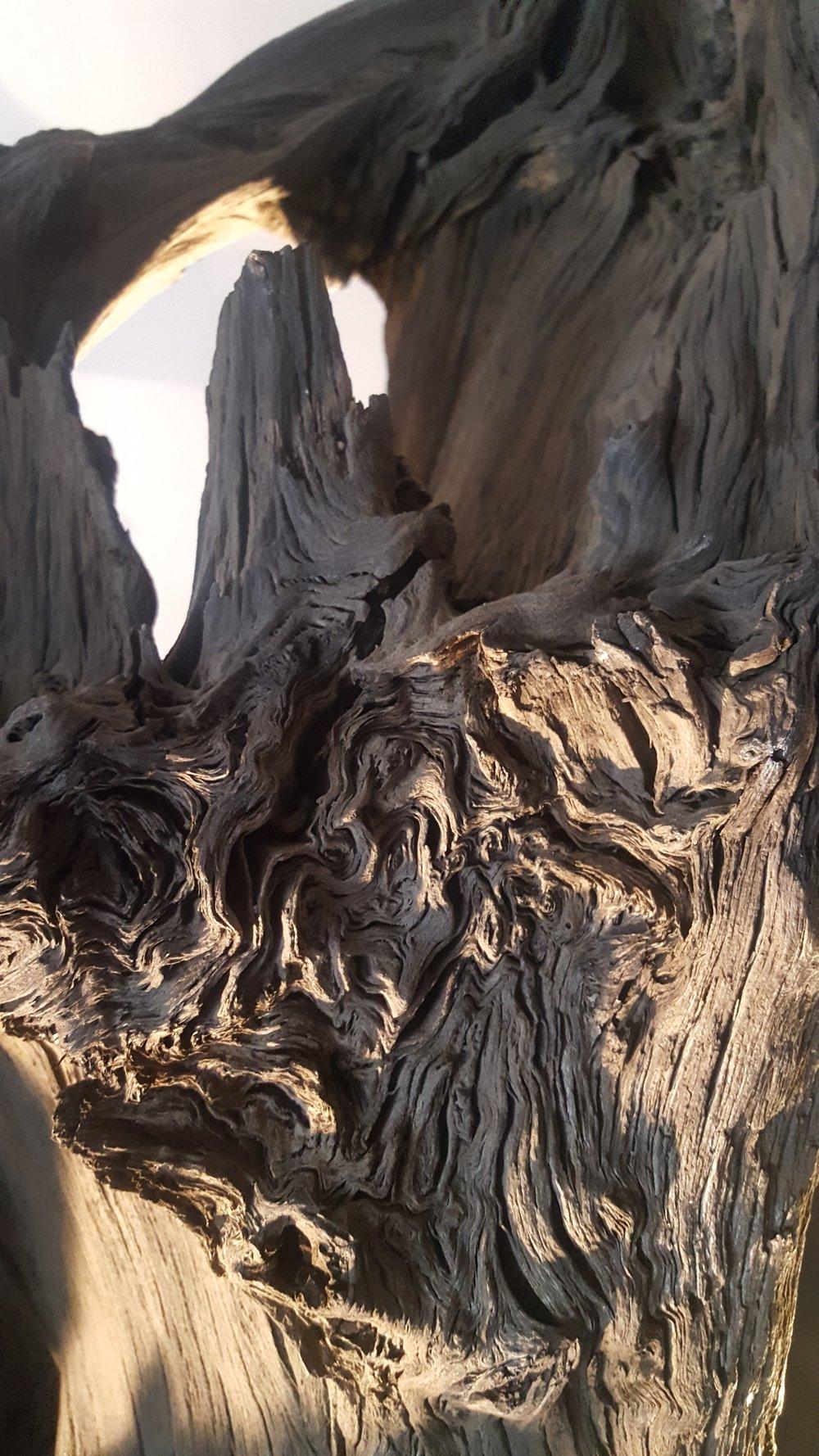 bogoak detail 1.jpg