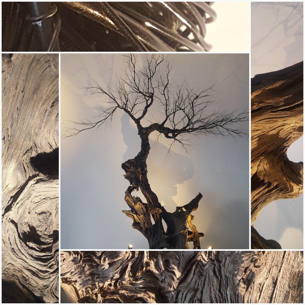 the faerie tree.jpg