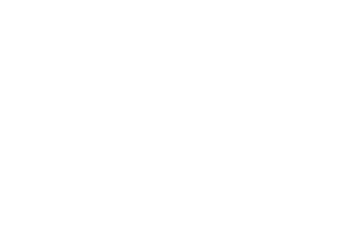 Yanagida Projects