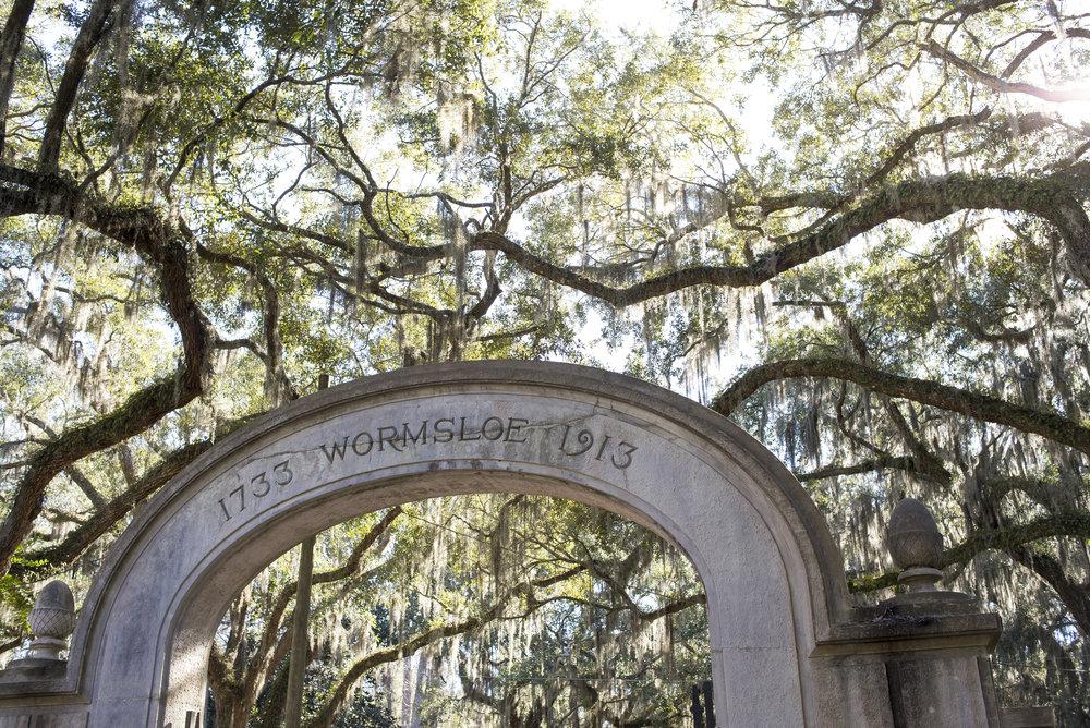 Wormsloe Historic Site, Savannah GA | Genteel & Bard