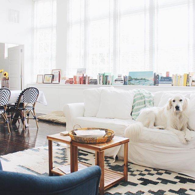 New home, same high-maintenance roommate 🌻 #erbnb