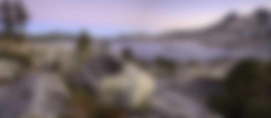TRTA-0017-Blur.jpg