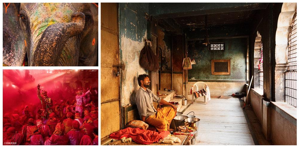 India_Gallery_#3.jpg