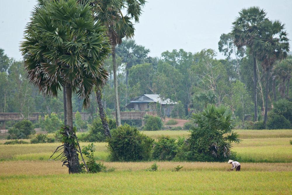 Cambodia-0017.jpg