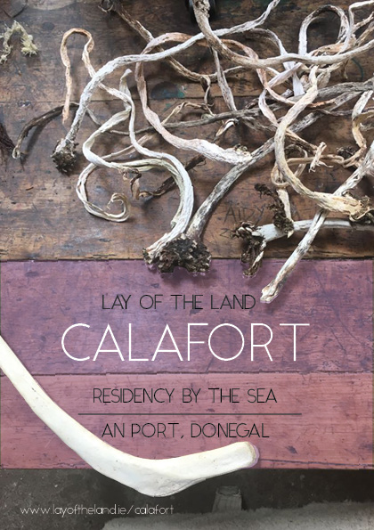 calafort poster .jpg