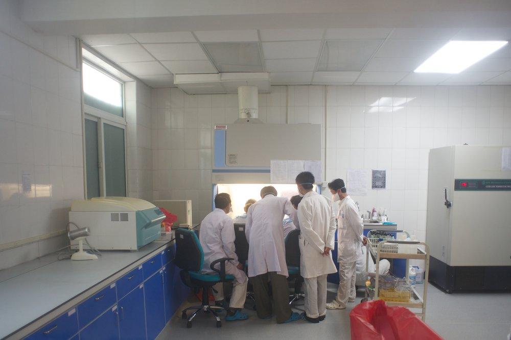 Nat Lab 280.jpg
