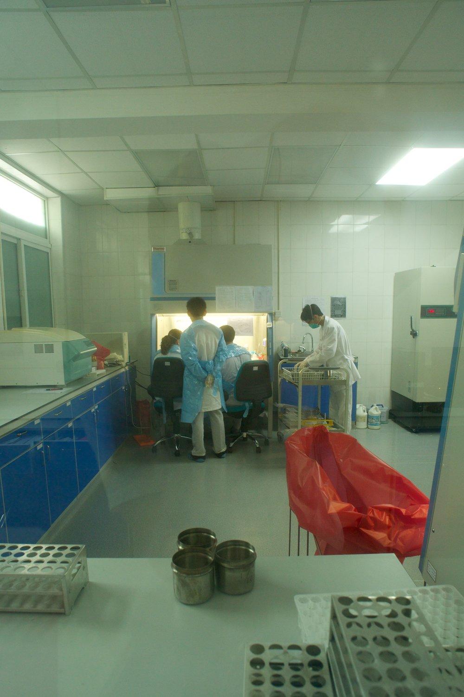 Nat Lab 284.jpg