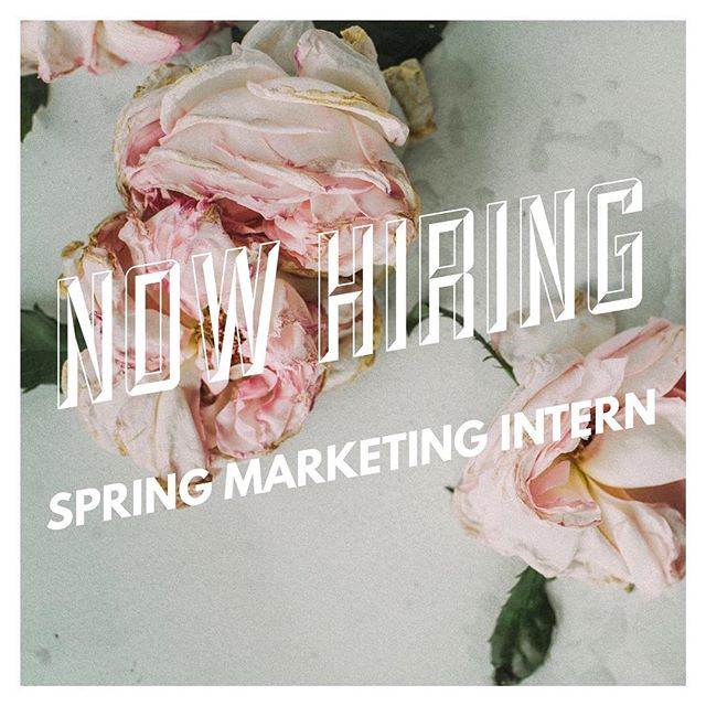 Alchemy is hiring a part-time spring Marketing intern! 🦄✨You must be self-motivated, dedicated and ambitious. If you like having a flexible work schedule and are interested in the beauty industry, we would love to chat with you! If you or someone you know might be a good fit for this position, send them our way! We pay in good hair, hugs & college credit 🤗 #alchemythesalonct