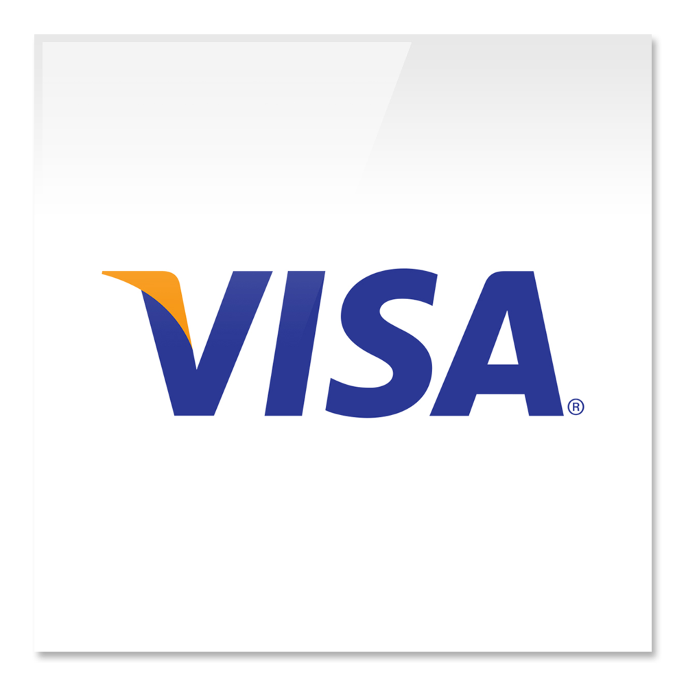 ___SkillSets Online VISA Credit Logo edited by Graham Hnedak Brand G Creative 30 June 2016.png