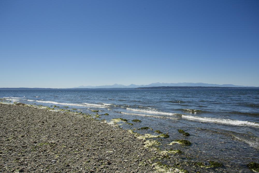 beach-2-Lrg.jpg