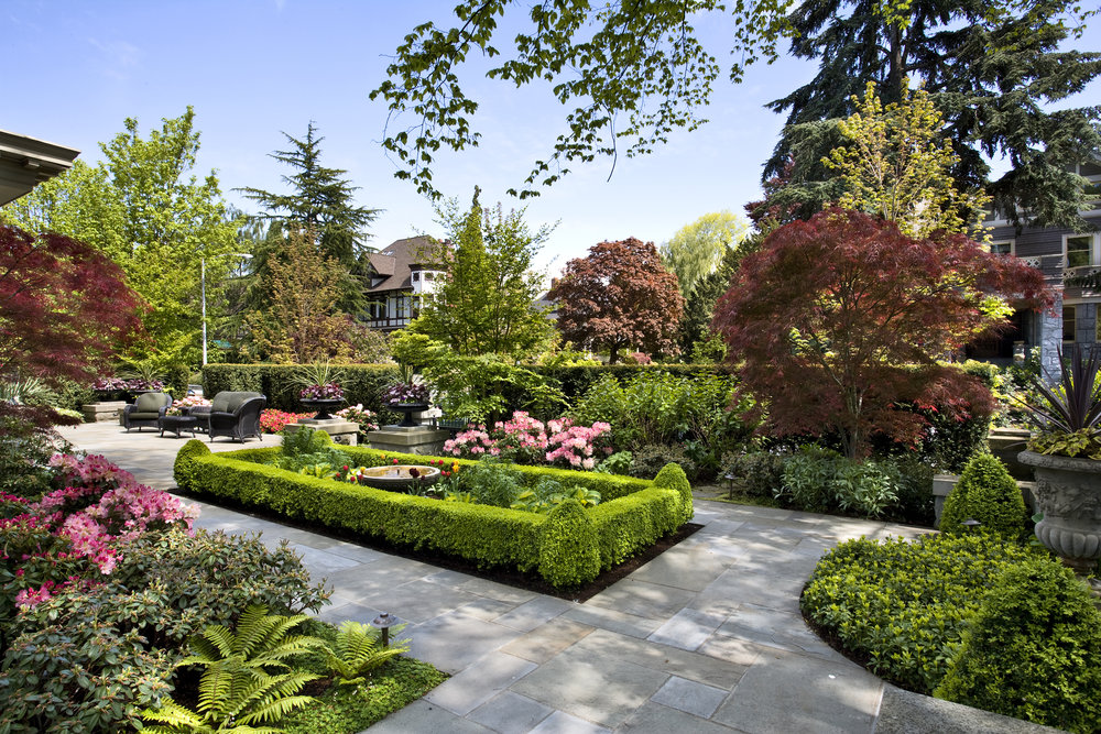 Botanical oasis
