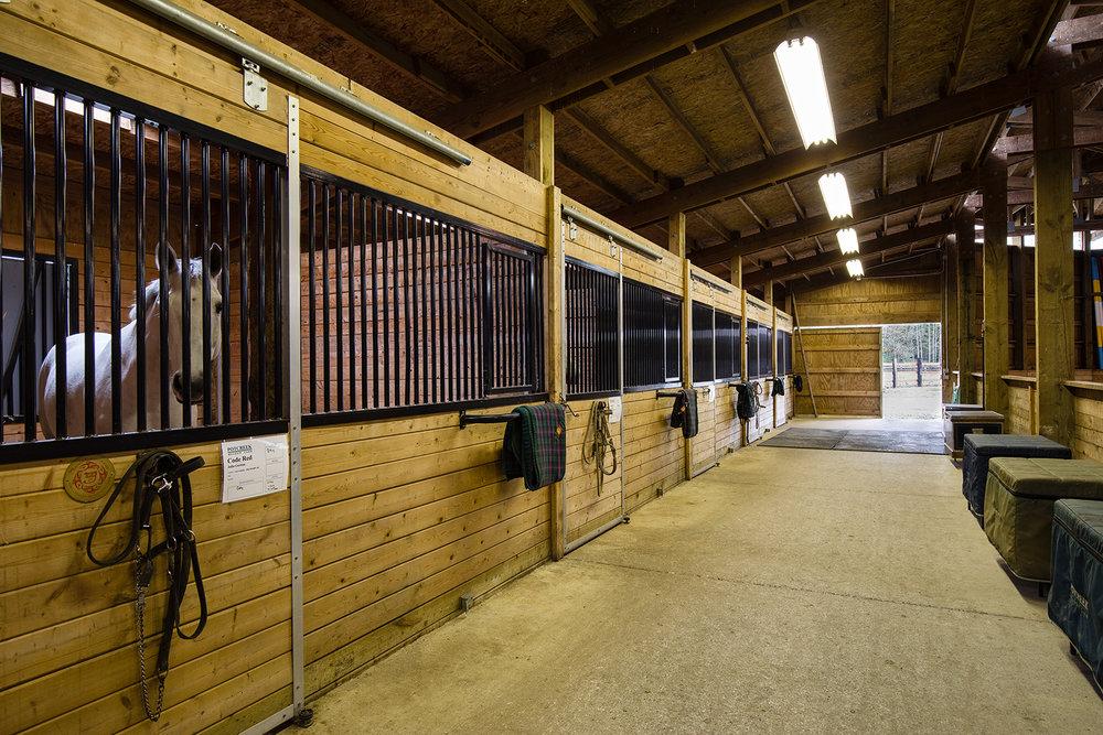Barn-Stalls-1-Med.jpg